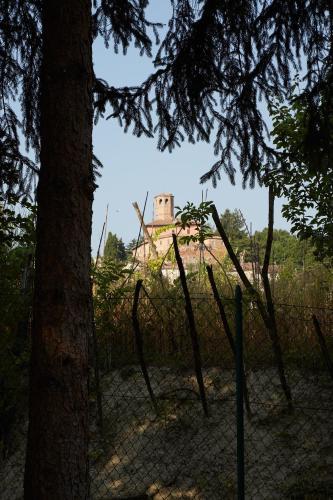 foto Alle Rive B&B (Castel Boglione)