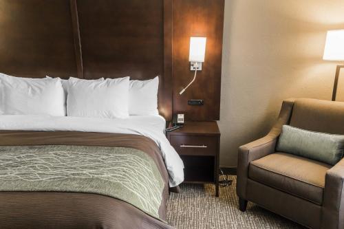 Comfort Inn & Suites Pharr