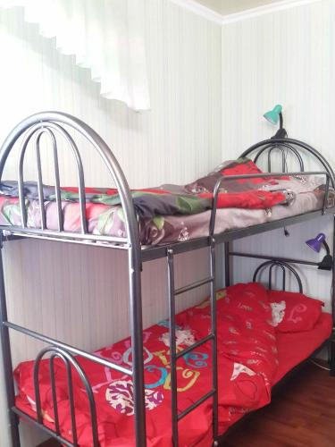 Llitera en dormitori per a homes (Bunk Bed in Male Dormitory Room)