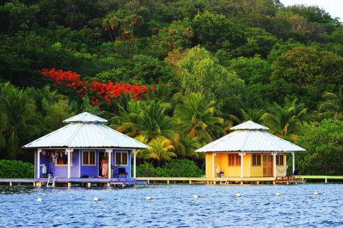 Mango Creek Lodge, Port Royal