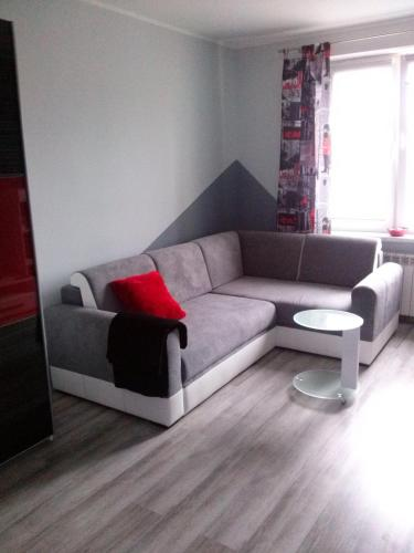 Apartament Wenecja, Toruń