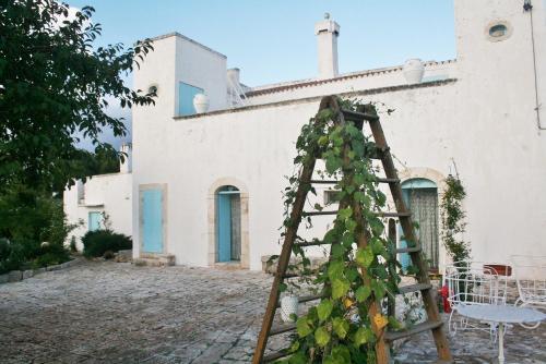 foto Masseria Torre Vigna (Castellana Grotte)