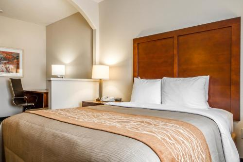 Comfort Inn & Suites Oakland