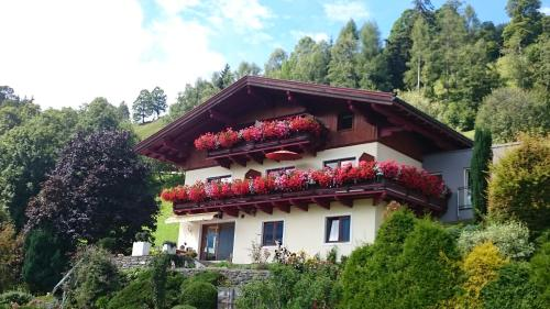 Отель Haus Salzachblick 0 звёзд Австрия