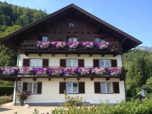 Ferienwohnung Annemarie Limbacher - Apartment mit Blick auf die Berge
