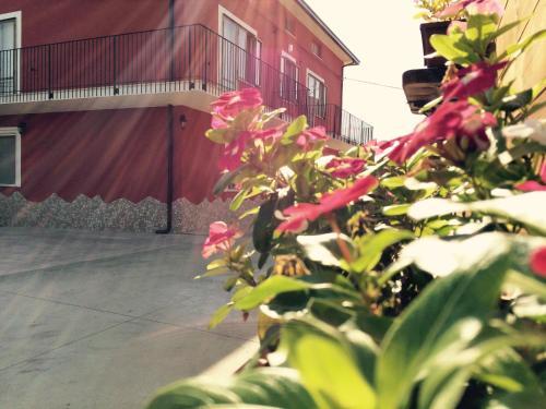 foto B&b La Casa Del Nonno (Casoli)