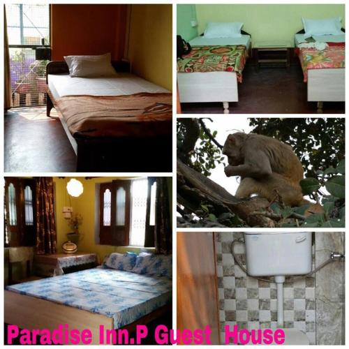 Picture of Paradise Inn Guest House