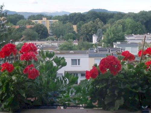 Отель Fewo Anna Freiburg 3 звезды Германия