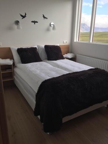 Отель Lónið Apartments 0 звёзд Исландия