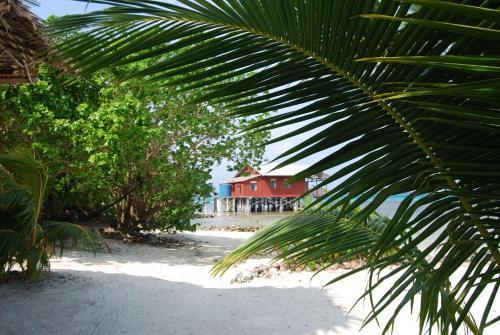 Imagination Island, Gizo