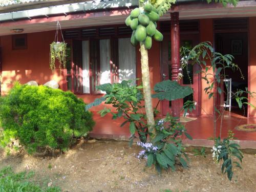 Riverdale Guest House