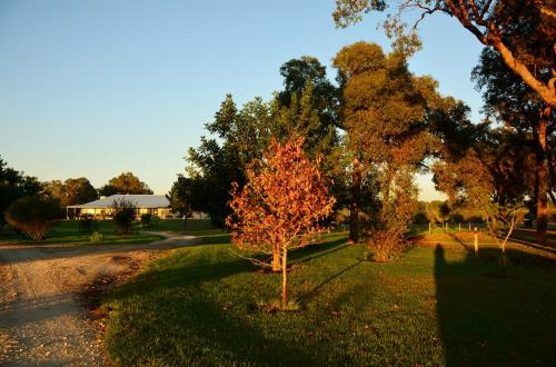 Sandy Lake Farm