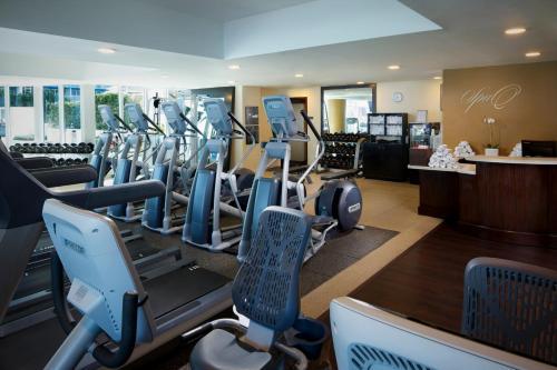 Hilton Fort Lauderdale Beach Resort Hotel Review Florida