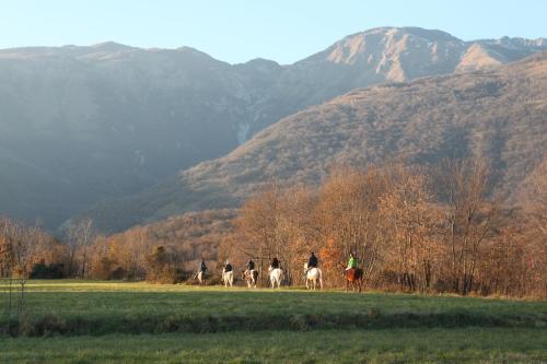 Agriturismo al Ranch