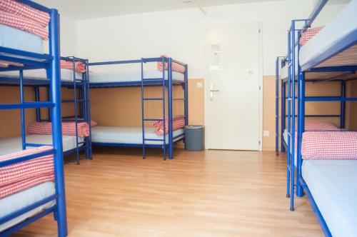 Bed in Female 8-Bed Dormitory Room with Shared Bathroom