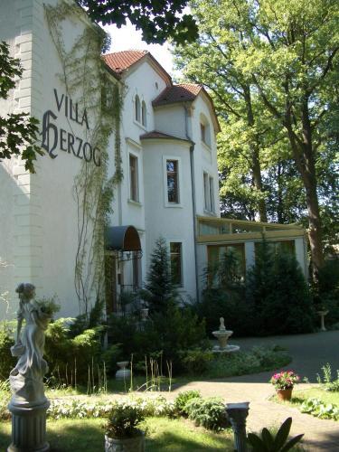 Отель Hotel Villa Herzog 3 звезды Германия