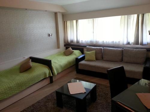 Отель Apartment Brvenik Plus 4 звезды Сербия