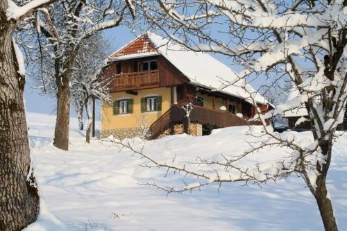 Отель Country House Novosel 4 звезды Хорватия