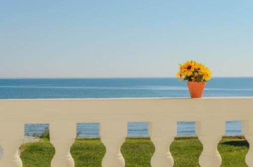 Sea View, 拉加纳斯