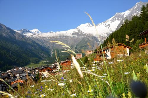 Waldrain 2, Saas-Fee