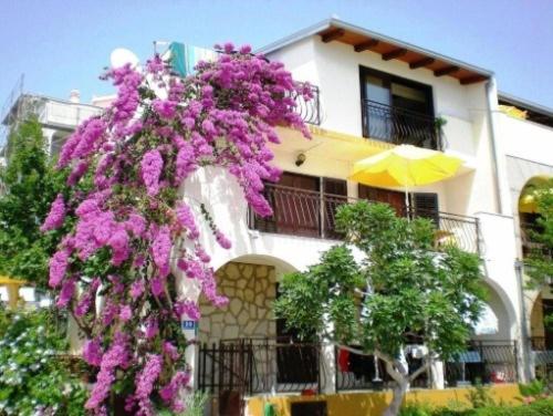 Apartment Okrug Gornji 2