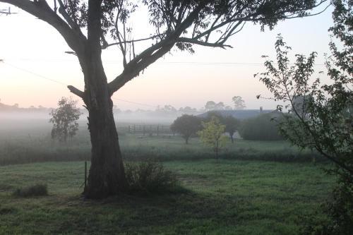 Abington Farm