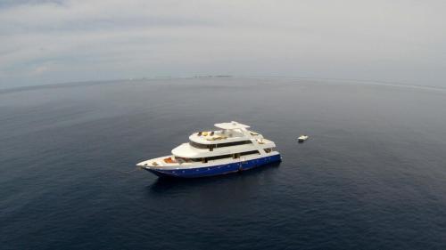 HotelManta Cruise