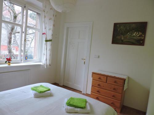 Apartment Brevnov