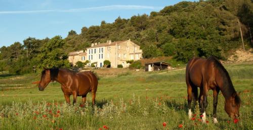 Domaine De Bertrandy