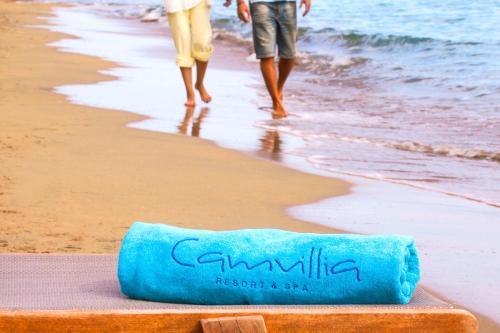 Camvillia Resort - 38 of 42