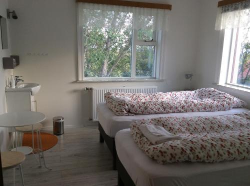 Kálfafellsstadur Bed & Breakfast