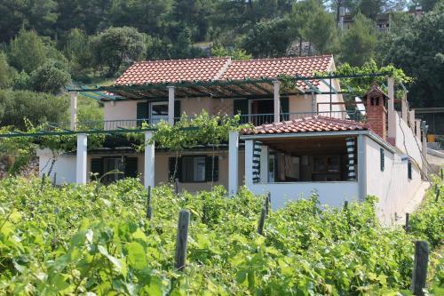 Villa Ilic