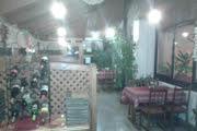 Kis Duna Motel and Camping