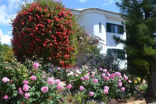 Casa Josephina Olhão Algarve Portogallo