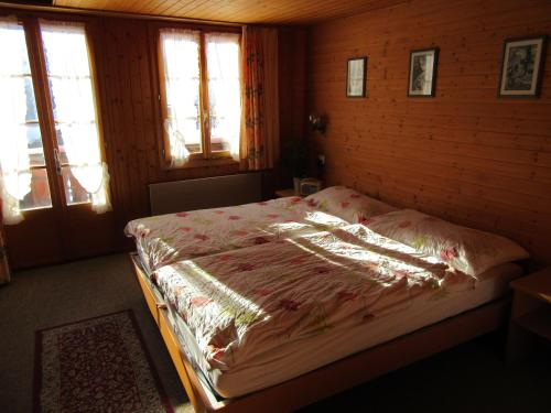 Twin Room with Jungfrau Mountain View