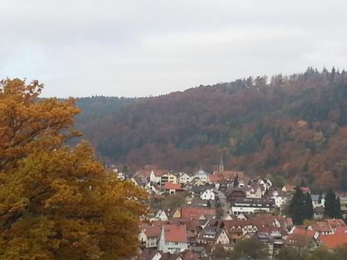 TraumAuszeit - Ferienwohnung Waldblick