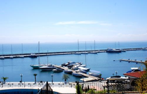 Baratero Vlas Marina Apartment