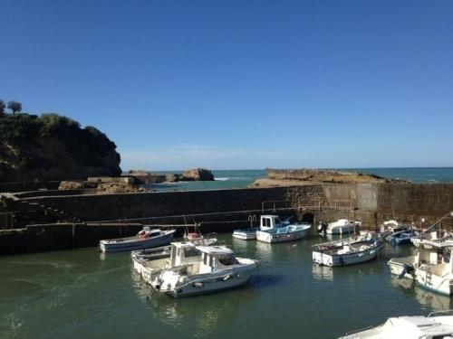 Rental Apartment Les Falaises - Biarritz
