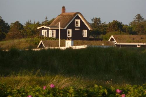 Fanø Holiday Home 424