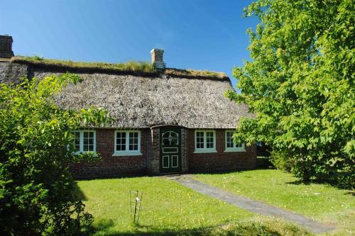 Fanø Holiday Home 431