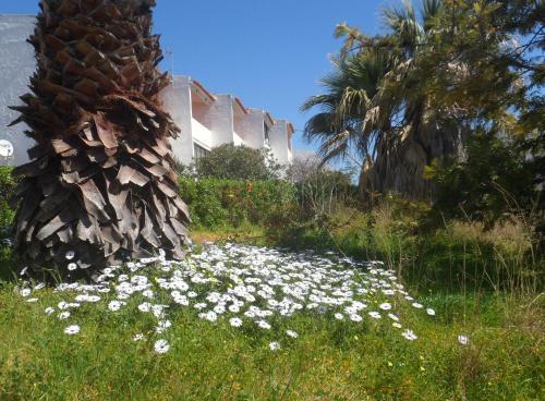 Apartment Tudo Bem Olhão Algarve Portogallo