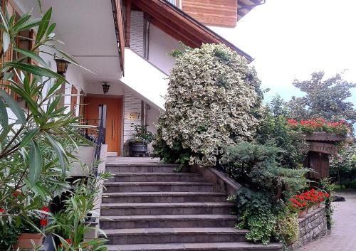 Отель Pension Stamserhof 2 звезды Италия