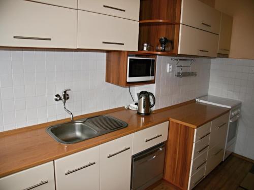 Apartment Krymská 1605