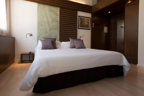 Habitación Doble - 1 o 2 camas Hotel Museu Llegendes de Girona 15