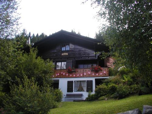 Betula, Schwarzsee