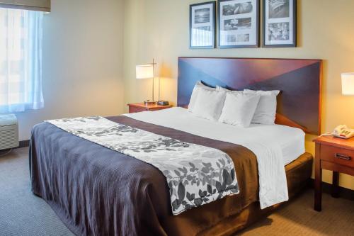 Sleep Inn & Suites Dublin