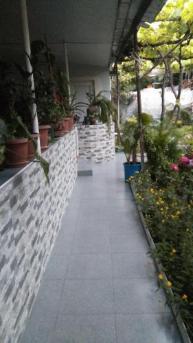 Guest House Duruji