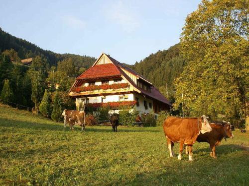 Отель Unterer Gurethshof 0 звёзд Германия