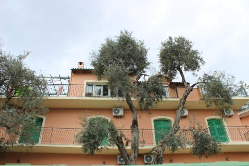 Belvedere Paleo