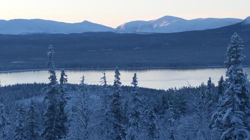 Mountain view lodge Ottsjö